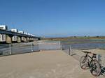 クロスバイク・利根川